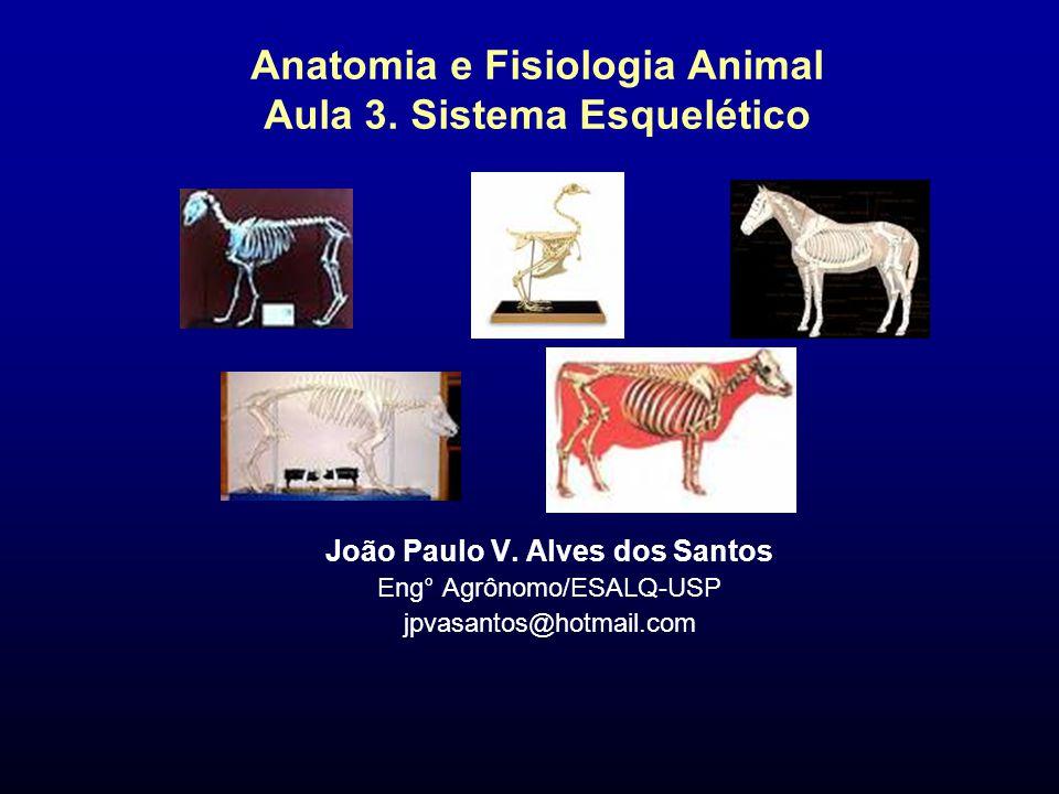 Anatomia e Fisiologia Animal Aula 3. Sistema Esquelético João Paulo V. Alves dos Santos Eng° Agrônomo/ESALQ-USP jpvasantos@hotmail.com