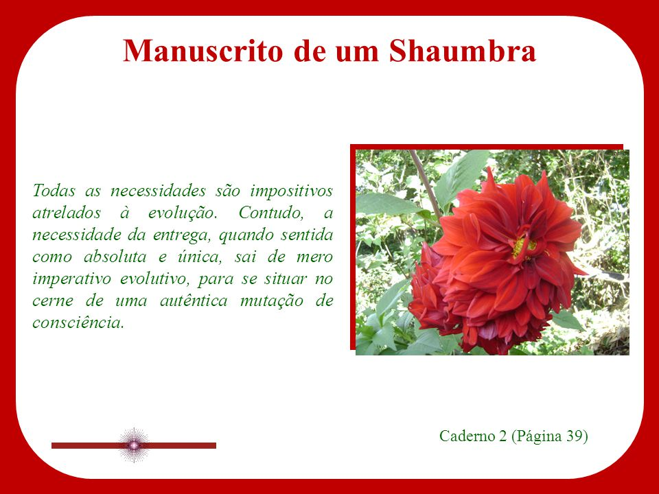 Manuscrito de um Shaumbra Caderno 2 Páginas 39, 40, 41, 42 www.manuscritoshaumbra.com SET/09
