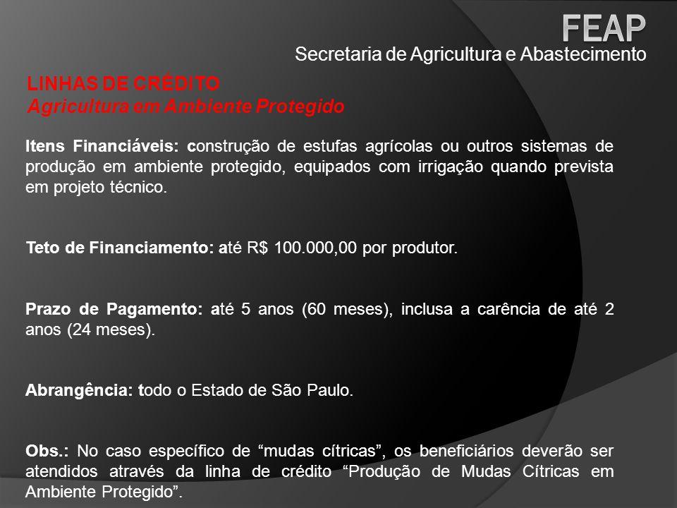 Secretaria de Agricultura e Abastecimento LINHAS DE CRÉDITO Fruticultura Itens Financiáveis: todos os itens necessários para instalação e/ou manutenção de pomares de frutas tropicais, subtropicais e temperadas.