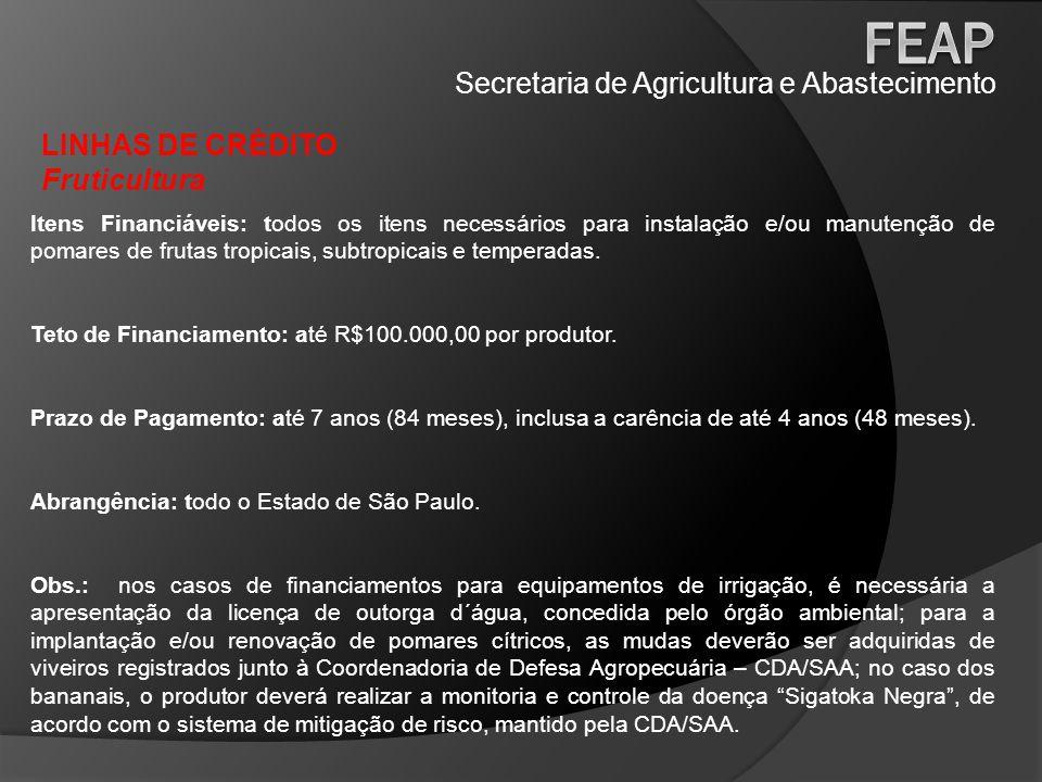 Secretaria de Agricultura e Abastecimento LINHAS DE CRÉDITO Fruticultura Itens Financiáveis: todos os itens necessários para instalação e/ou manutençã