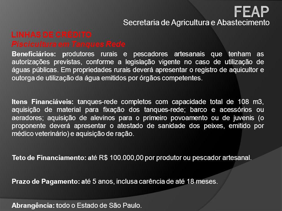 Secretaria de Agricultura e Abastecimento LINHAS DE CRÉDITO Piscicultura em Tanques Rede Beneficiários: produtores rurais e pescadores artesanais que