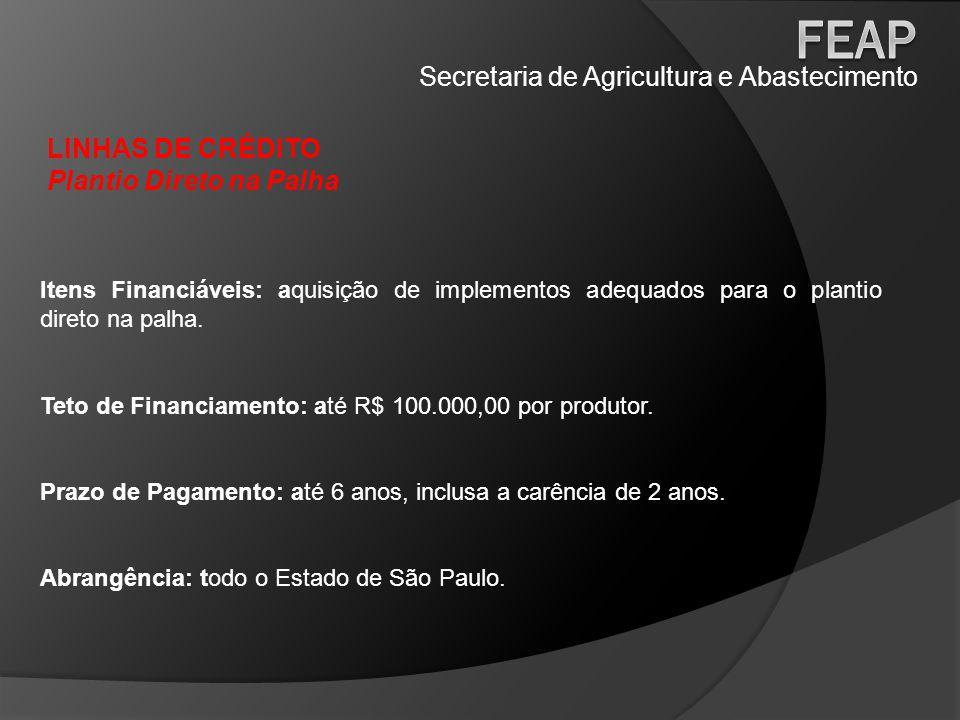 Secretaria de Agricultura e Abastecimento LINHAS DE CRÉDITO Plantio Direto na Palha Itens Financiáveis: aquisição de implementos adequados para o plan