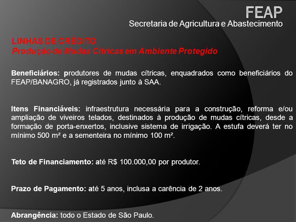 Secretaria de Agricultura e Abastecimento LINHAS DE CRÉDITO Produção de Mudas Cítricas em Ambiente Protegido Beneficiários: produtores de mudas cítric