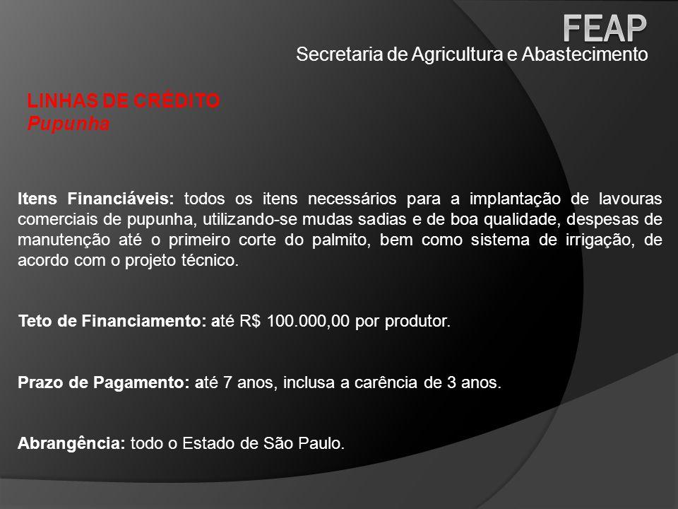 Secretaria de Agricultura e Abastecimento LINHAS DE CRÉDITO Pupunha Itens Financiáveis: todos os itens necessários para a implantação de lavouras come
