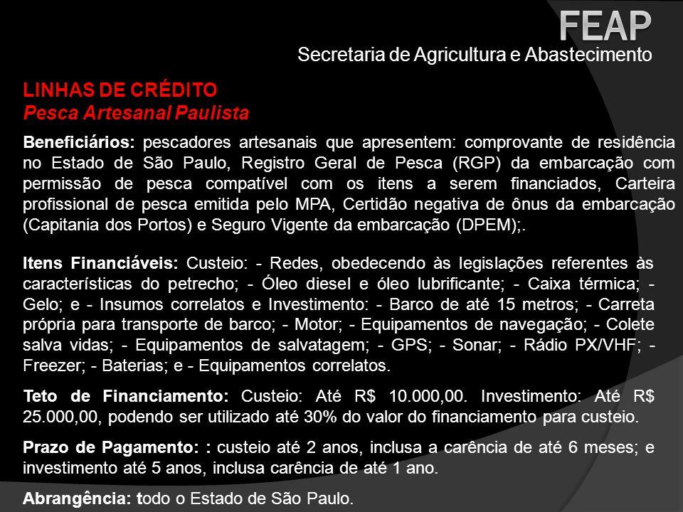 Secretaria de Agricultura e Abastecimento LINHAS DE CRÉDITO Pesca Artesanal Paulista Itens Financiáveis: Custeio: - Redes, obedecendo às legislações r