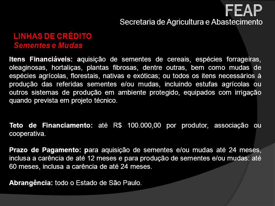 Secretaria de Agricultura e Abastecimento LINHAS DE CRÉDITO Sementes e Mudas Itens Financiáveis: aquisição de sementes de cereais, espécies forrageira