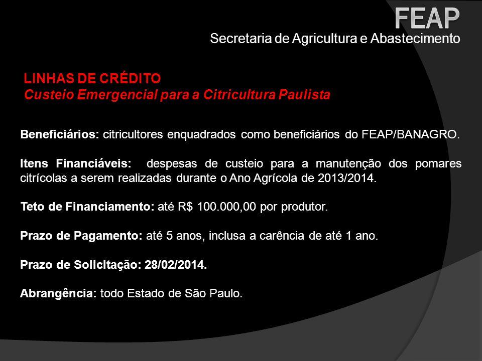 Secretaria de Agricultura e Abastecimento LINHAS DE CRÉDITO Custeio Emergencial para a Citricultura Paulista Beneficiários: citricultores enquadrados