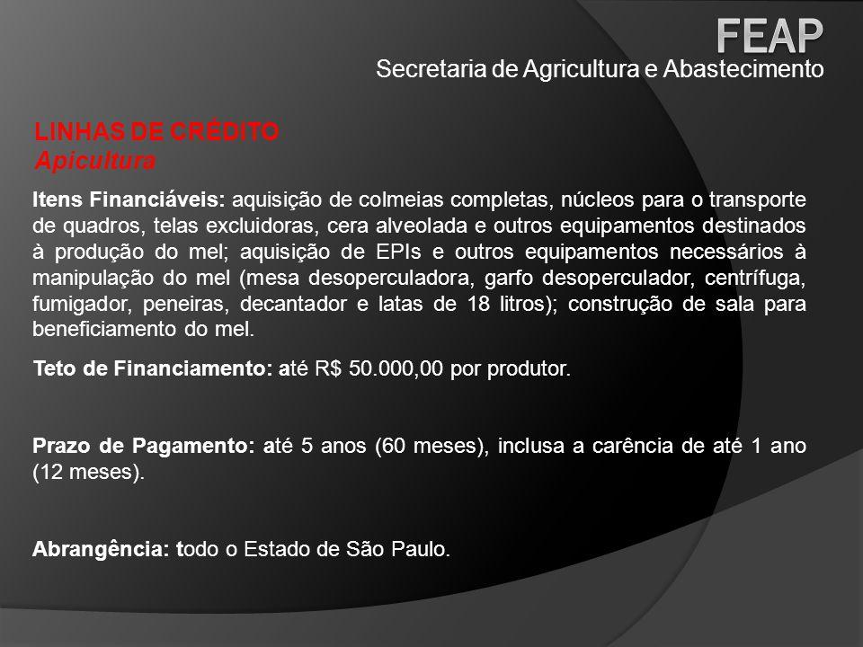 Secretaria de Agricultura e Abastecimento LINHAS DE CRÉDITO Apicultura Itens Financiáveis: aquisição de colmeias completas, núcleos para o transporte