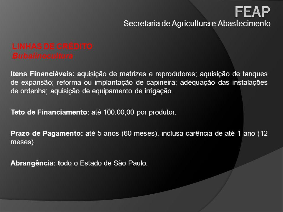 Secretaria de Agricultura e Abastecimento LINHAS DE CRÉDITO Café Paulista Itens Financiáveis: todos os itens necessários para implantação, manutenção e/ou renovação de lavouras de café, bem como a aquisição de equipamentos e infraestrutura para o desenvolvimento da atividade, conforme previsto em projeto técnico.