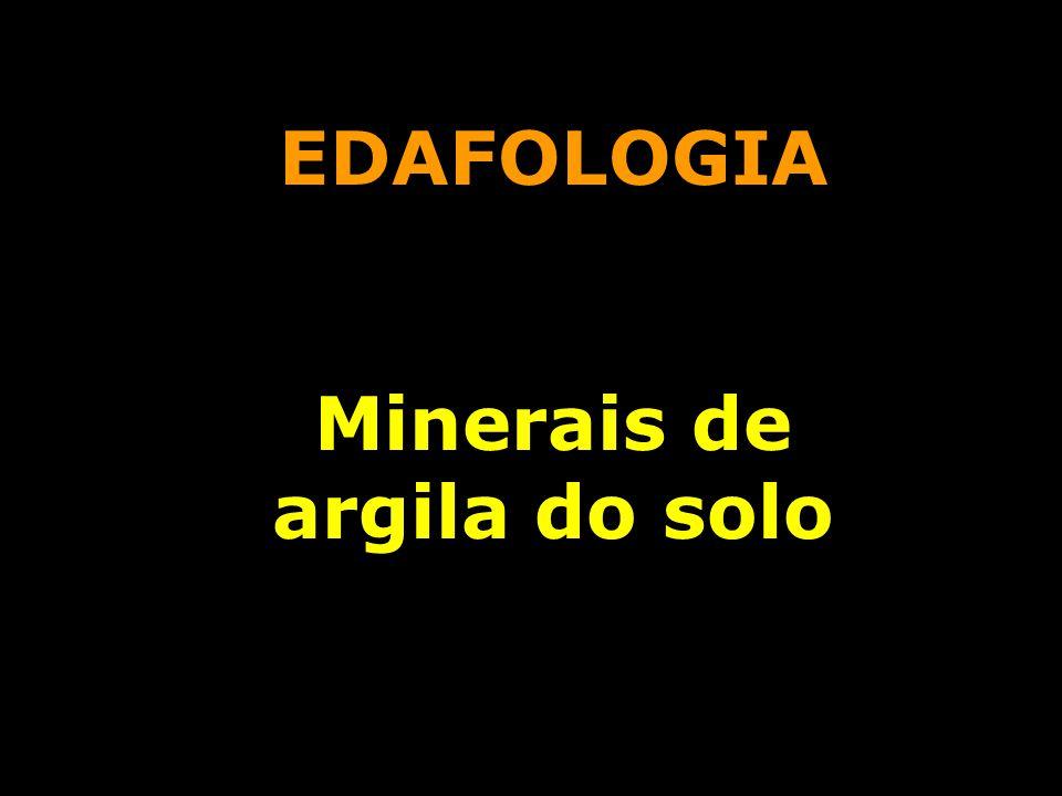 EDAFOLOGIA Minerais de argila do solo