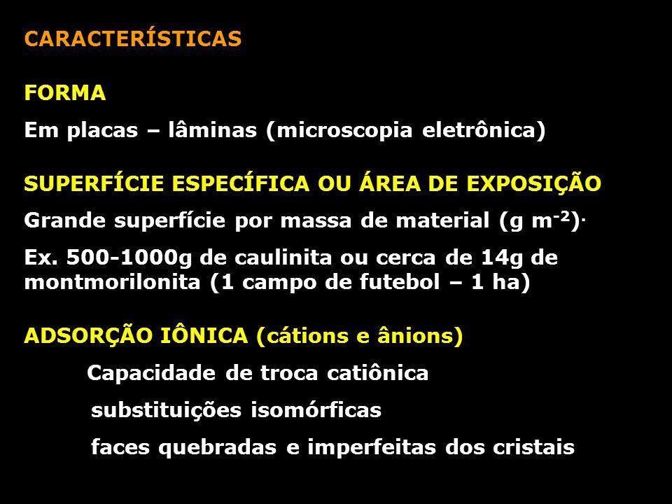 CARACTERÍSTICAS FORMA Em placas – lâminas (microscopia eletrônica) SUPERFÍCIE ESPECÍFICA OU ÁREA DE EXPOSIÇÃO Grande superfície por massa de material