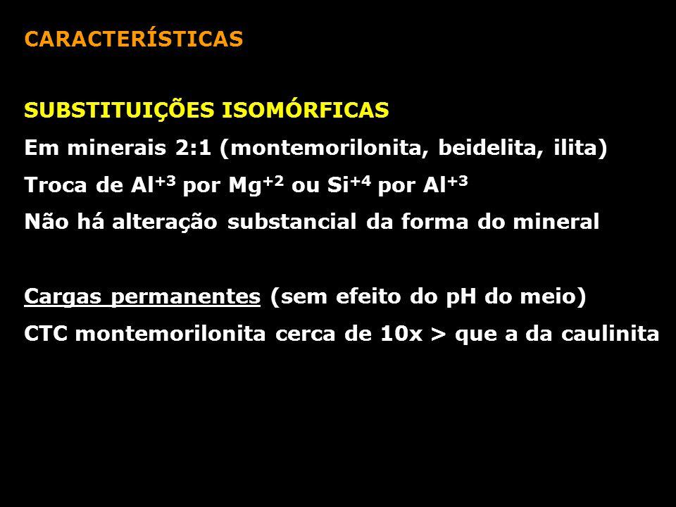 CARACTERÍSTICAS SUBSTITUIÇÕES ISOMÓRFICAS Em minerais 2:1 (montemorilonita, beidelita, ilita) Troca de Al +3 por Mg +2 ou Si +4 por Al +3 Não há alter