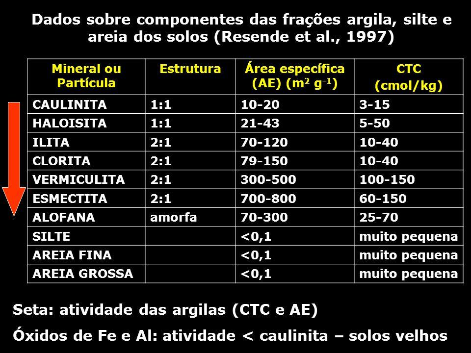 Mineral ou Partícula EstruturaÁrea específica (AE) (m 2 g -1 ) CTC (cmol/kg) CAULINITA1:110-203-15 HALOISITA1:121-435-50 ILITA2:170-12010-40 CLORITA2: