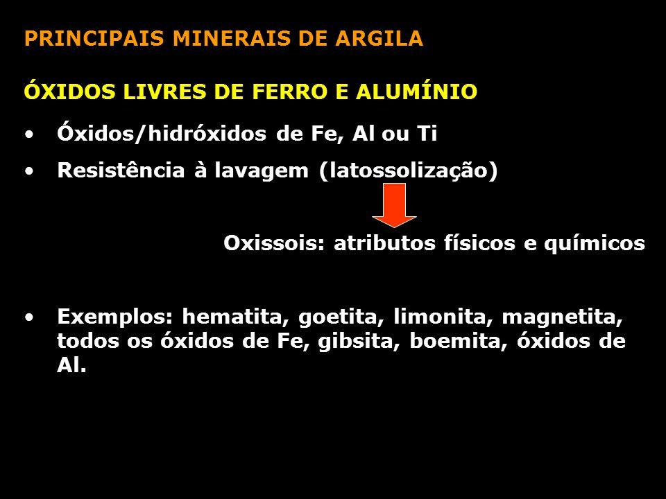 PRINCIPAIS MINERAIS DE ARGILA ÓXIDOS LIVRES DE FERRO E ALUMÍNIO Óxidos/hidróxidos de Fe, Al ou Ti Resistência à lavagem (latossolização) Oxissois: atr