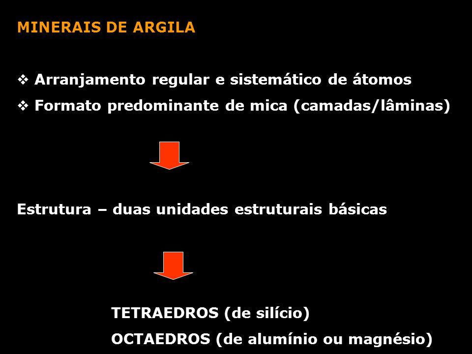 PRINCIPAIS MINERAIS DE ARGILA VERMICULITA Estrutura: camadas de talco ou mica e água Substituição do Si por Al, ou de Mg por Fe água interlamelar- ligada aos cátions e água livre CTC: 100 e 150 e.mg/100g de material seco ILITA Íons de K entre lâminas Rigidez - Não expansiva CTC: 20 a 40 e.mg/100g de material seco