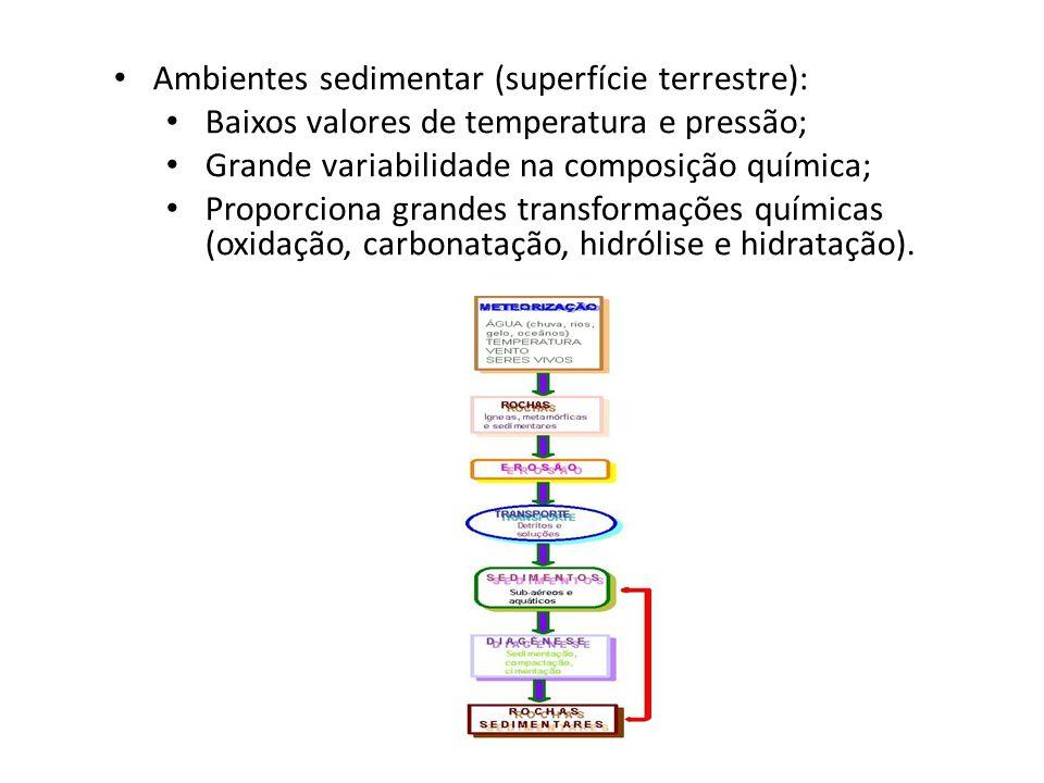 Ambientes sedimentar (superfície terrestre): Baixos valores de temperatura e pressão; Grande variabilidade na composição química; Proporciona grandes