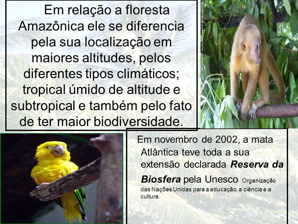 Em relação a floresta Amazônica ele se diferencia pela sua localização em maiores altitudes, pelos diferentes tipos climáticos; tropical úmido de alti