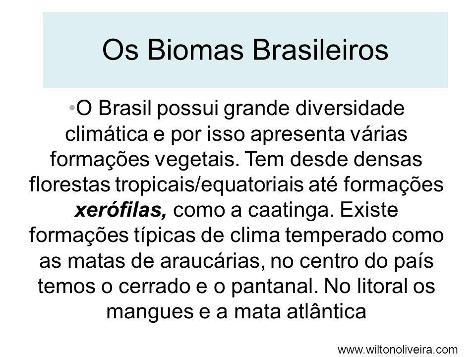 www.wiltonoliveira.com Os Biomas Brasileiros O Brasil possui grande diversidade climática e por isso apresenta várias formações vegetais. Tem desde de