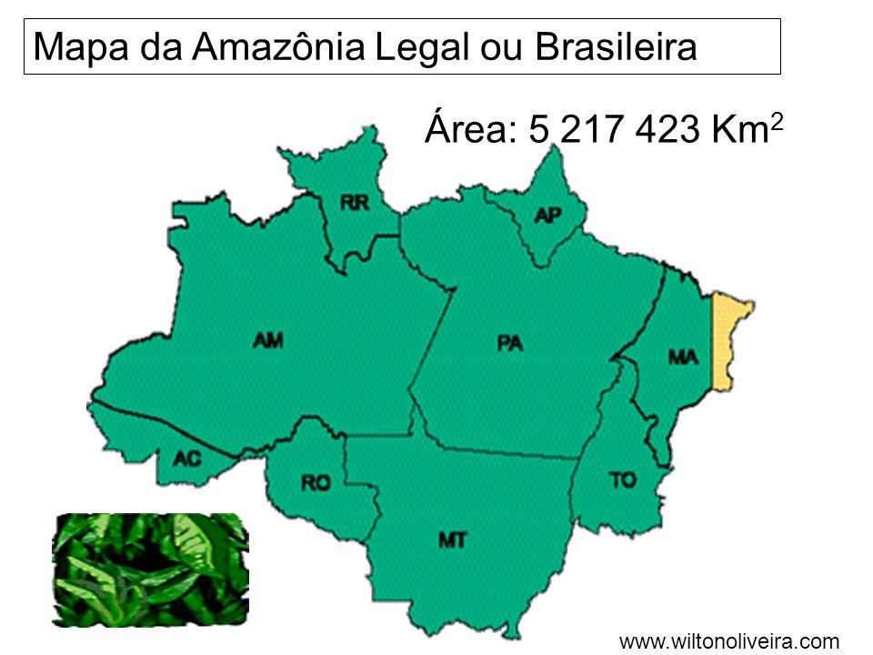 Exemplos de vegetação da Mata Atlântica Palmeiras Bromélias, begônias, orquídeas, cipós e briófitas Pau-brasil, jacarandá, peroba, jequitibá- rosa, cedro Tapiriria Andira Ananas Figueiras