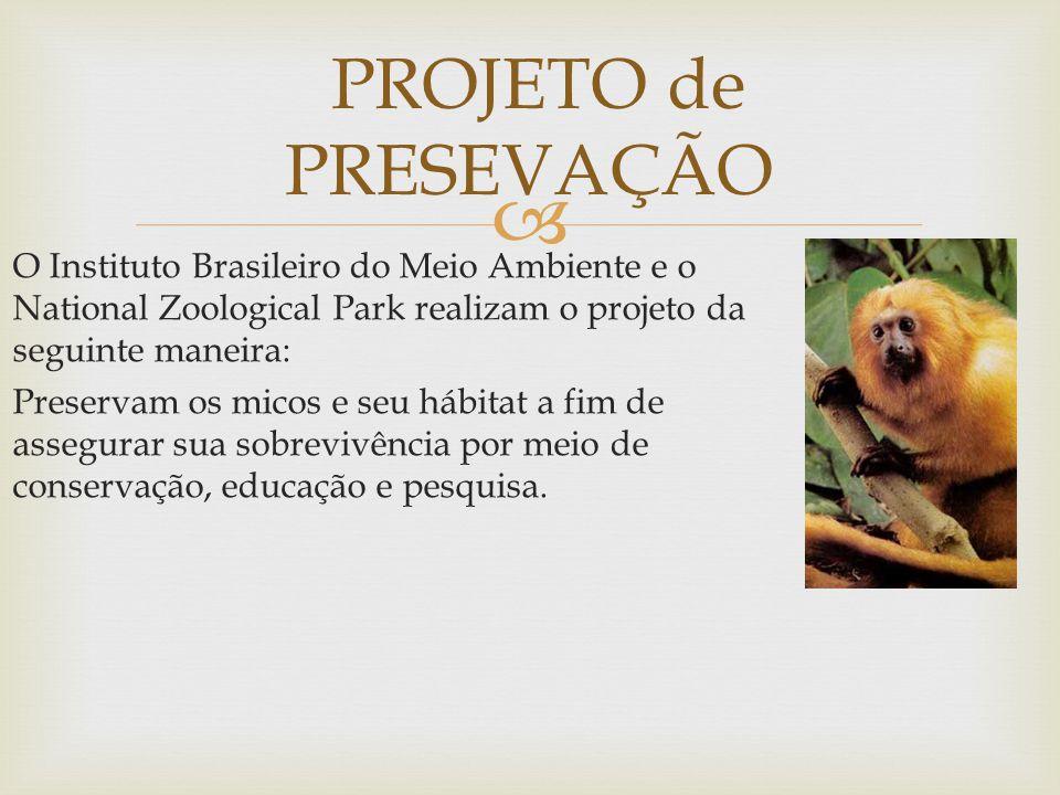  O Instituto Brasileiro do Meio Ambiente e o National Zoological Park realizam o projeto da seguinte maneira: Preservam os micos e seu hábitat a fim