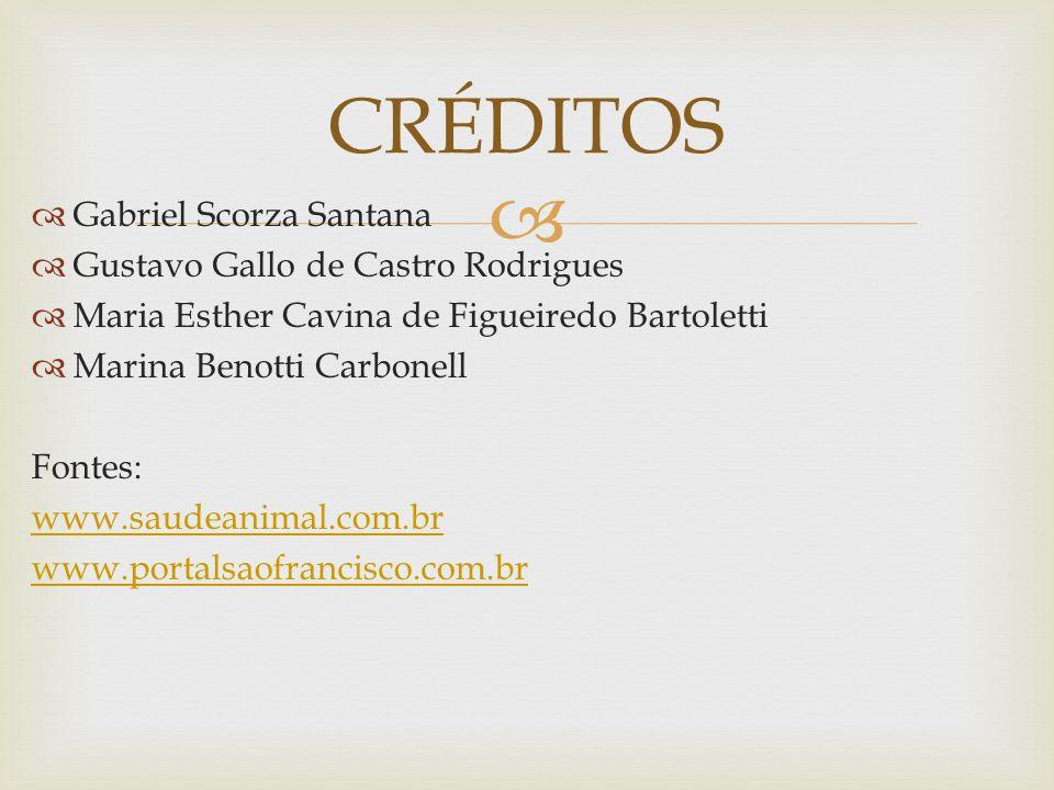   Gabriel Scorza Santana  Gustavo Gallo de Castro Rodrigues  Maria Esther Cavina de Figueiredo Bartoletti  Marina Benotti Carbonell Fontes: www.s