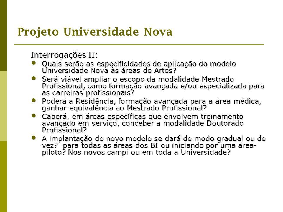 Projeto Universidade Nova Interrogações II: Quais serão as especificidades de aplicação do modelo Universidade Nova às áreas de Artes? Quais serão as