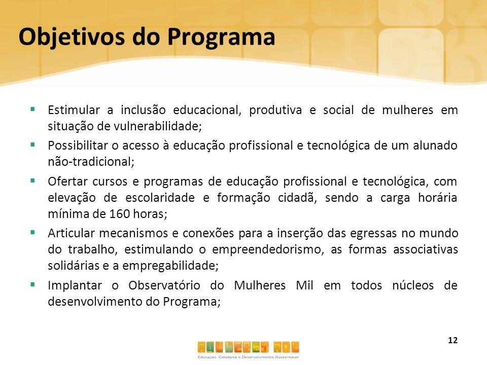 Objetivos do Programa  Estimular a inclusão educacional, produtiva e social de mulheres em situação de vulnerabilidade;  Possibilitar o acesso à edu