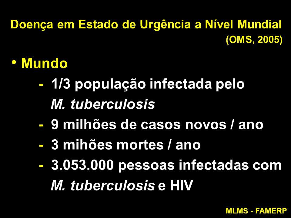Doença em Estado de Urgência a Nível Mundial (OMS, 2005) Mundo - 1/3 população infectada pelo M. tuberculosis - 9 milhões de casos novos / ano - 3 mih