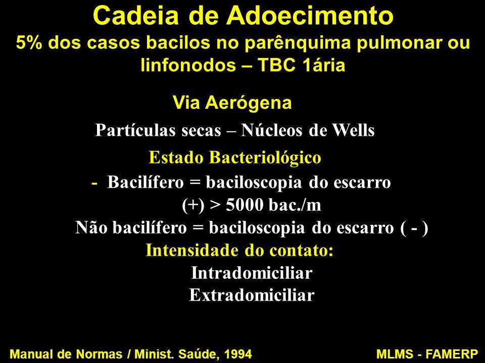 Cadeia de Adoecimento 5% dos casos bacilos no parênquima pulmonar ou linfonodos – TBC 1ária Via Aerógena Partículas secas – Núcleos de Wells Estado Ba