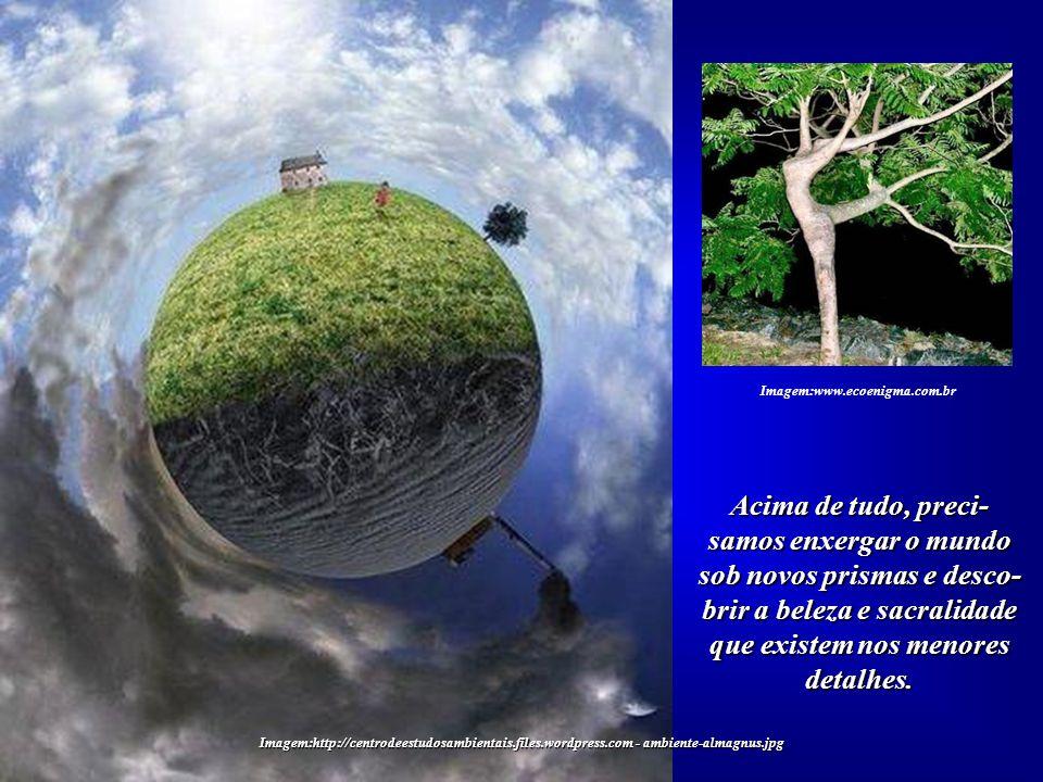 Imagem:http://centrodeestudosambientais.files.wordpress.com - ambiente-almagnus.jpg Apenas não soubemos identificar o momento de seu esgotamento, quan