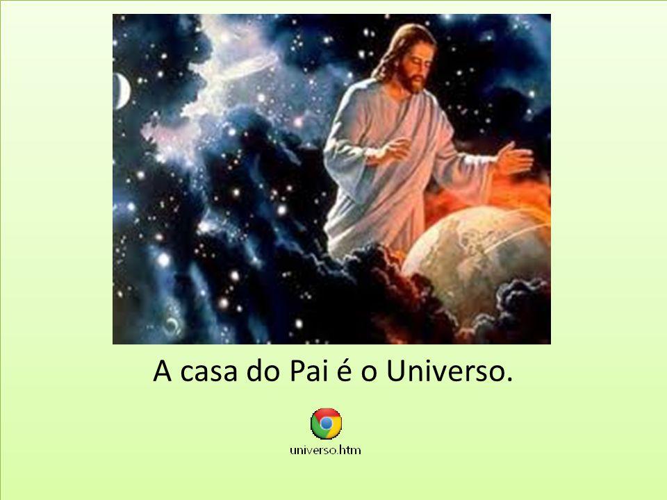 Dedicam-se a busca de alimentos e proteção; Inteligência latente; Vaga intuição da existência de Deus.