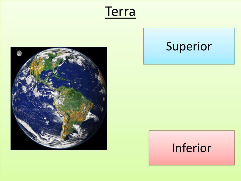 Classificação relativa dos mundos Quanto as condições física e moral Mundos inferiores a Terra Mundos no mesmo grau evolutivo Mundos mais avançados que a Terra