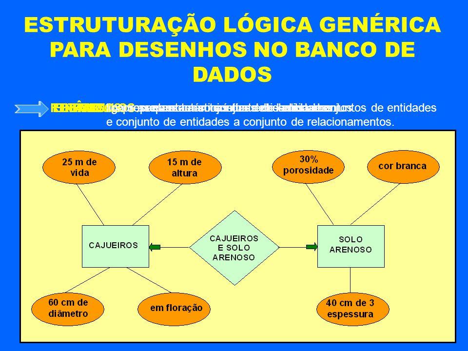 ESTRUTURAÇÃO LÓGICA GENÉRICA PARA DESENHOS NO BANCO DE DADOS representam conjunto de entidades. RETÂNGULOS: representam características das entidades.