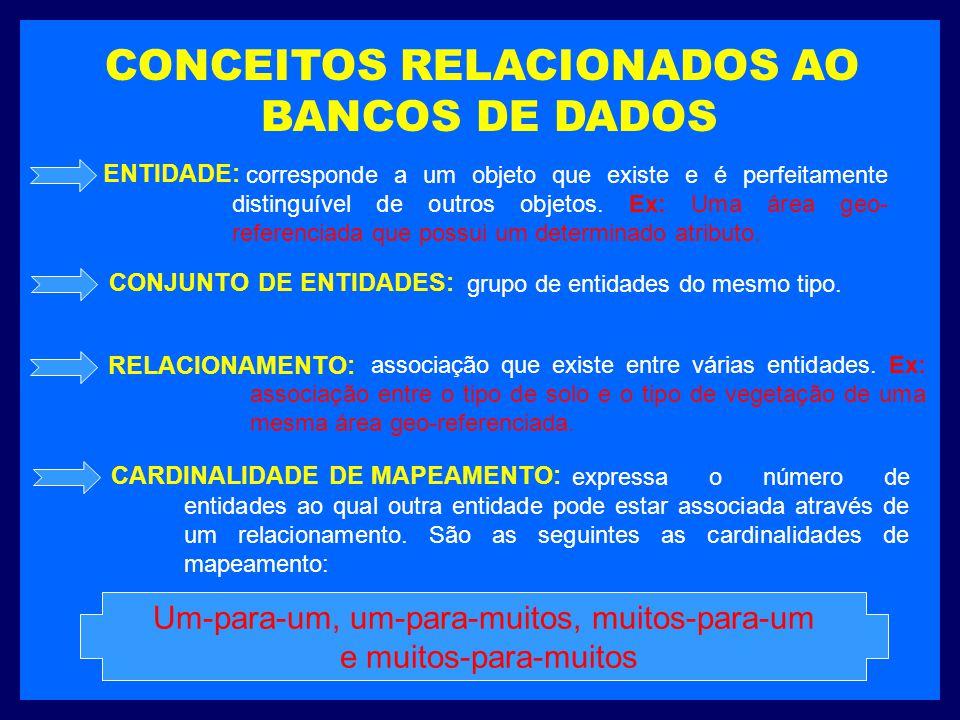 CONCEITOS RELACIONADOS AO BANCOS DE DADOS corresponde a um objeto que existe e é perfeitamente distinguível de outros objetos. Ex: Uma área geo- refer