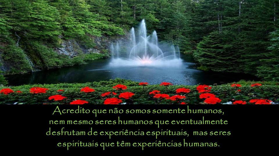 Acredito que não somos somente humanos, nem mesmo seres humanos que eventualmente desfrutam de experiência espirituais, mas seres espirituais que têm experiências humanas.