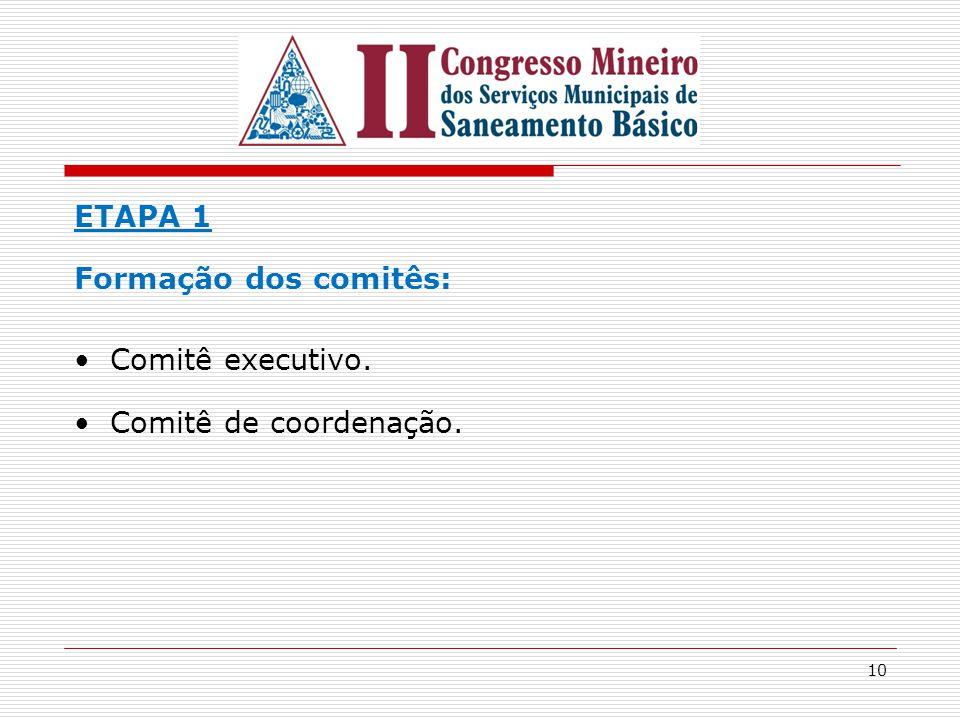 10 ETAPA 1 Formação dos comitês: Comitê executivo. Comitê de coordenação.