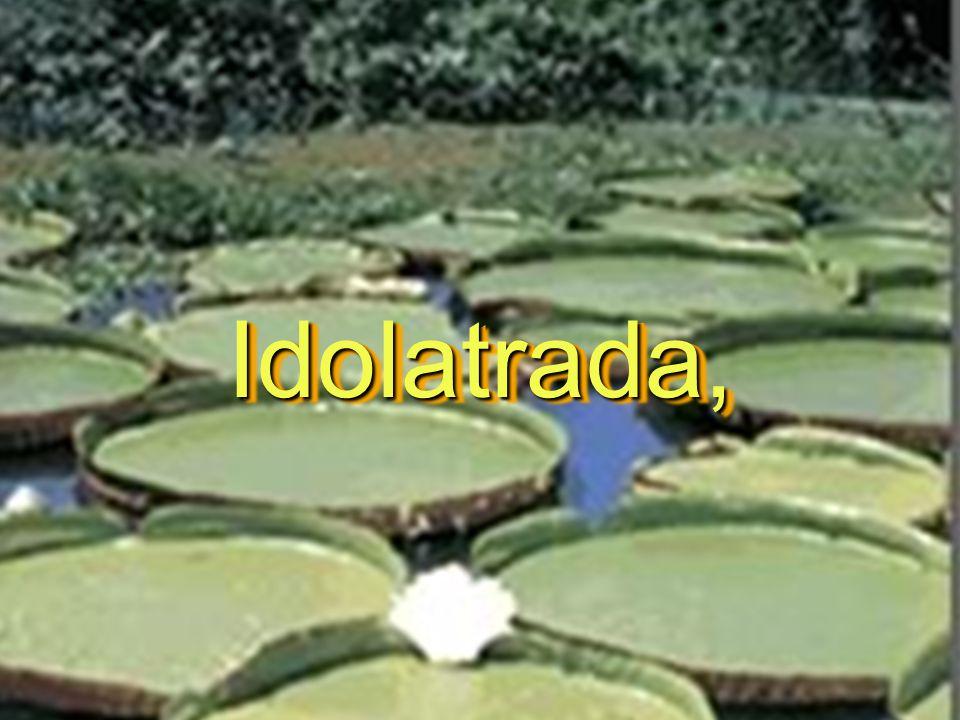 Idolatrada,Idolatrada,