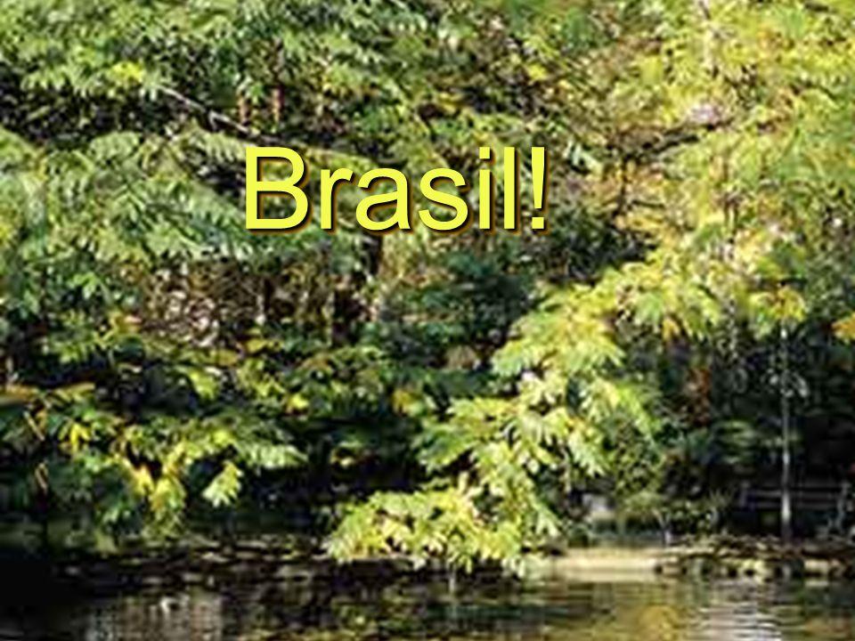 Brasil!Brasil!