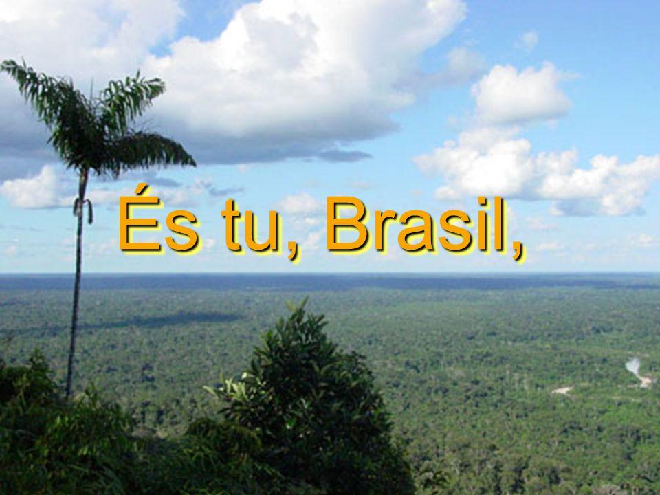 És tu, Brasil, És tu, Brasil,