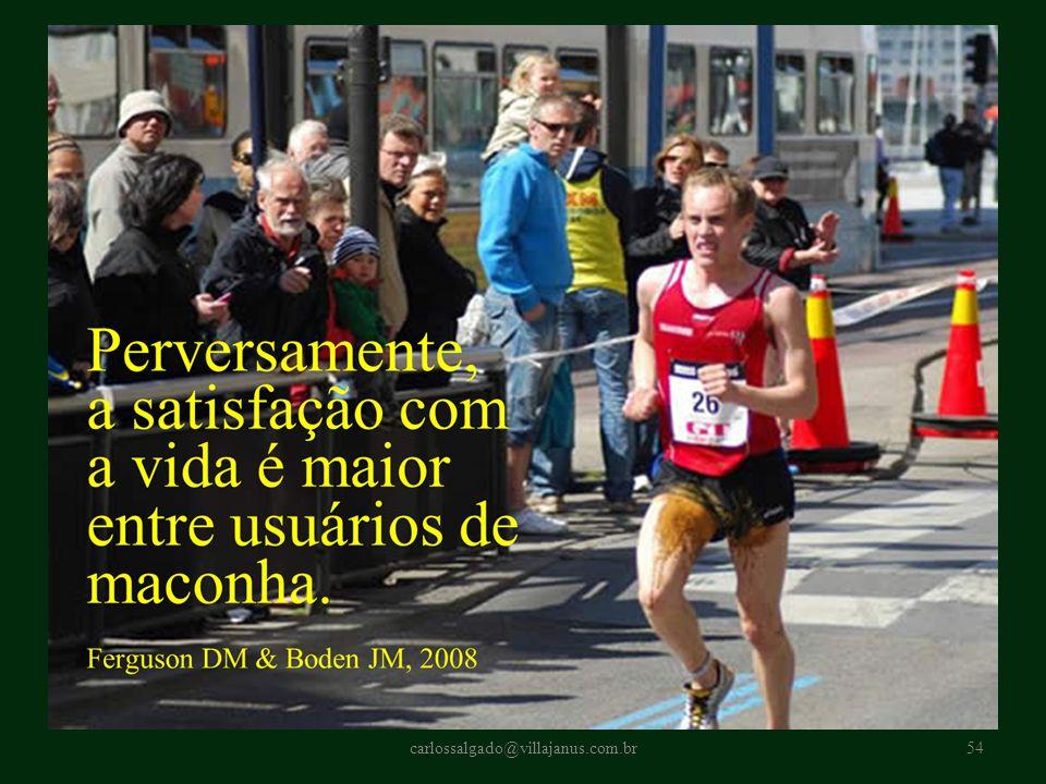 carlossalgado@villajanus.com.br54