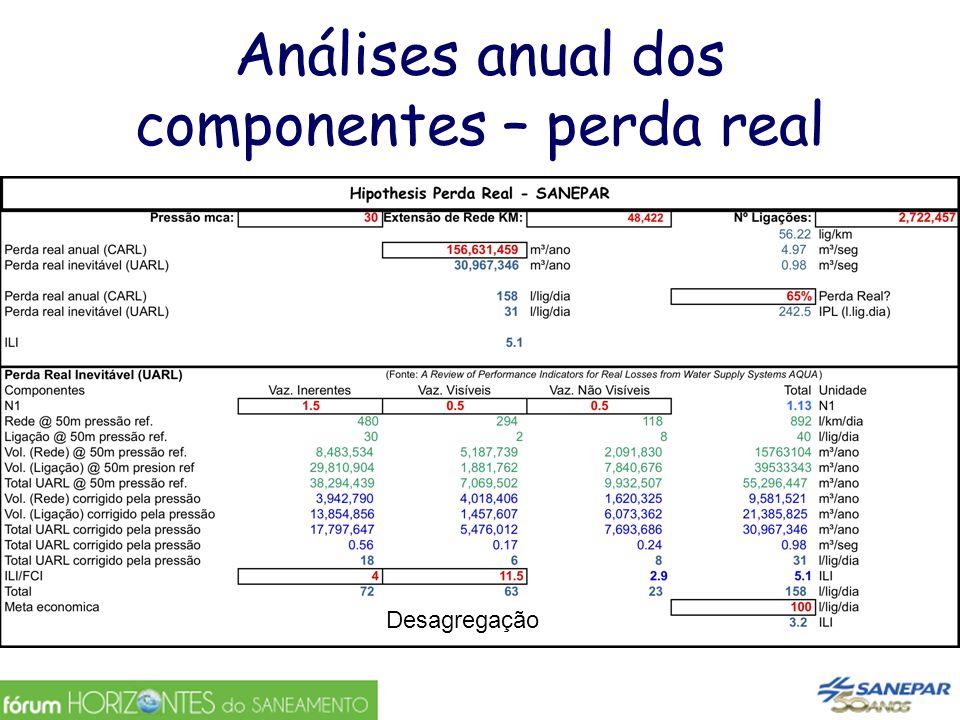 Análises anual dos componentes – perda real Desagregação