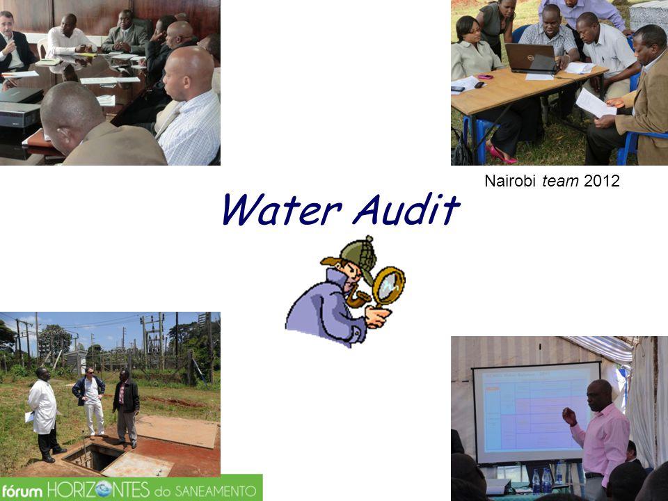 O que vem a ser um Water Audit .