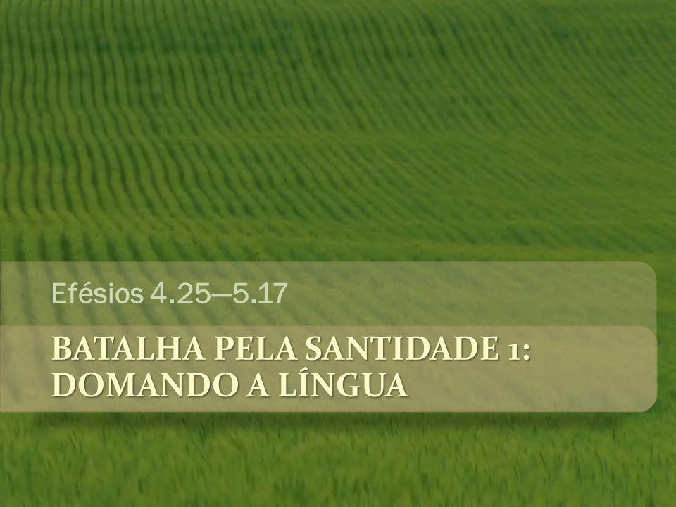 BATALHA PELA SANTIDADE 1: DOMANDO A LÍNGUA Efésios 4.25—5.17
