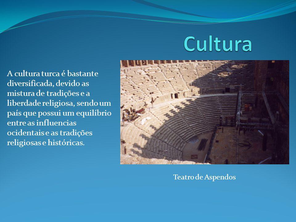 A cultura turca é bastante diversificada, devido as mistura de tradições e a liberdade religiosa, sendo um país que possui um equilíbrio entre as influencias ocidentais e as tradições religiosas e históricas.