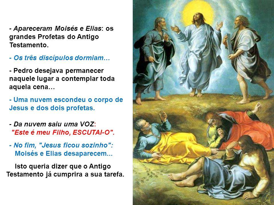 - Apareceram Moisés e Elias: os grandes Profetas do Antigo Testamento.