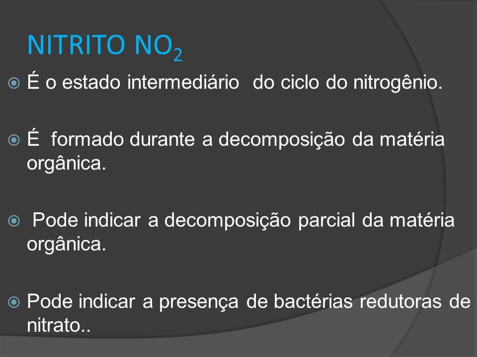 NITRITO NO 2  É o estado intermediário do ciclo do nitrogênio.  É formado durante a decomposição da matéria orgânica.  Pode indicar a decomposição