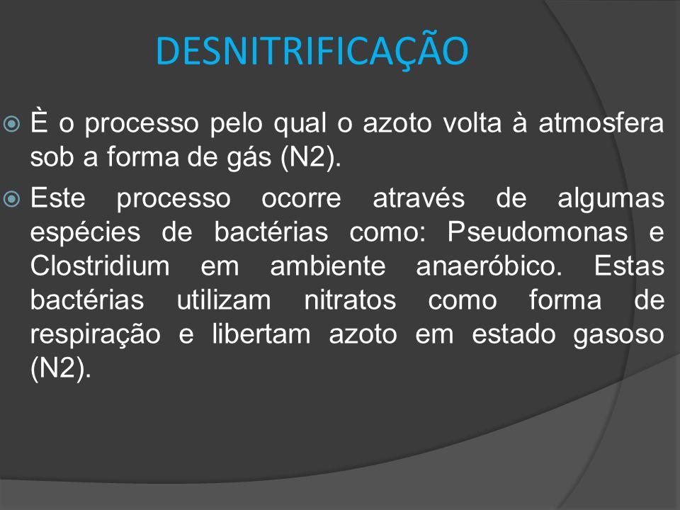 DESNITRIFICAÇÃO  È o processo pelo qual o azoto volta à atmosfera sob a forma de gás (N2).  Este processo ocorre através de algumas espécies de bact