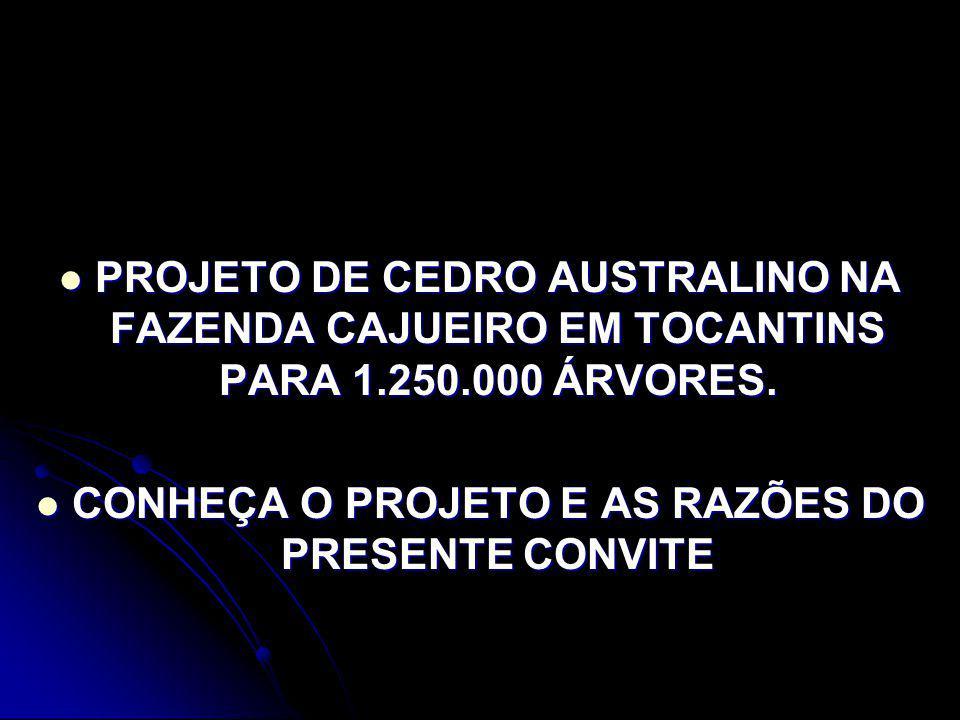 PROJETO DE CEDRO AUSTRALINO NA FAZENDA CAJUEIRO EM TOCANTINS PARA 1.250.000 ÁRVORES.