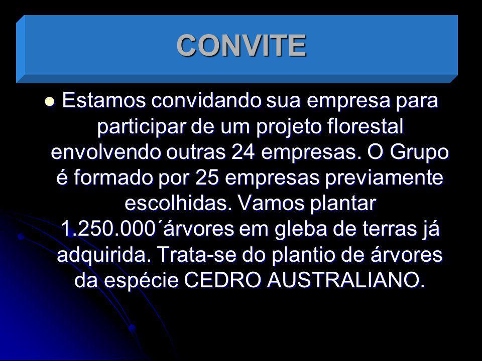 CONVITE Estamos convidando sua empresa para participar de um projeto florestal envolvendo outras 24 empresas. O Grupo é formado por 25 empresas previa