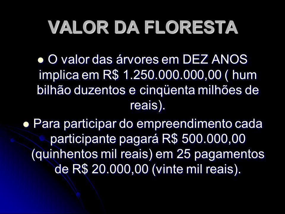 VALOR DA FLORESTA O valor das árvores em DEZ ANOS implica em R$ 1.250.000.000,00 ( hum bilhão duzentos e cinqüenta milhões de reais). O valor das árvo